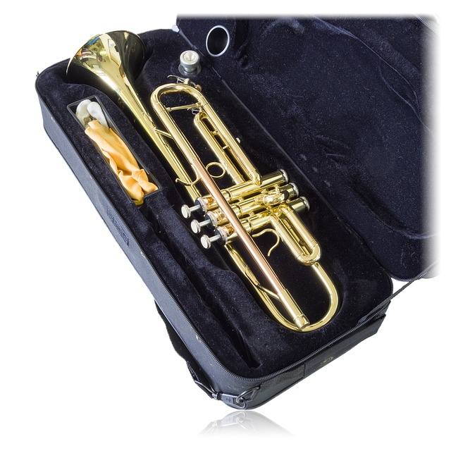 You should use the original instrument case but there are good alternatives