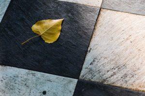 Leaf on black and white tiles