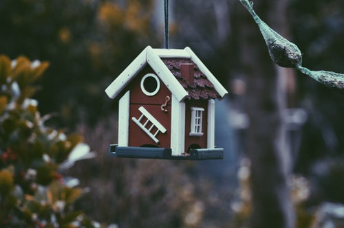 closeup photo of red and white bird house