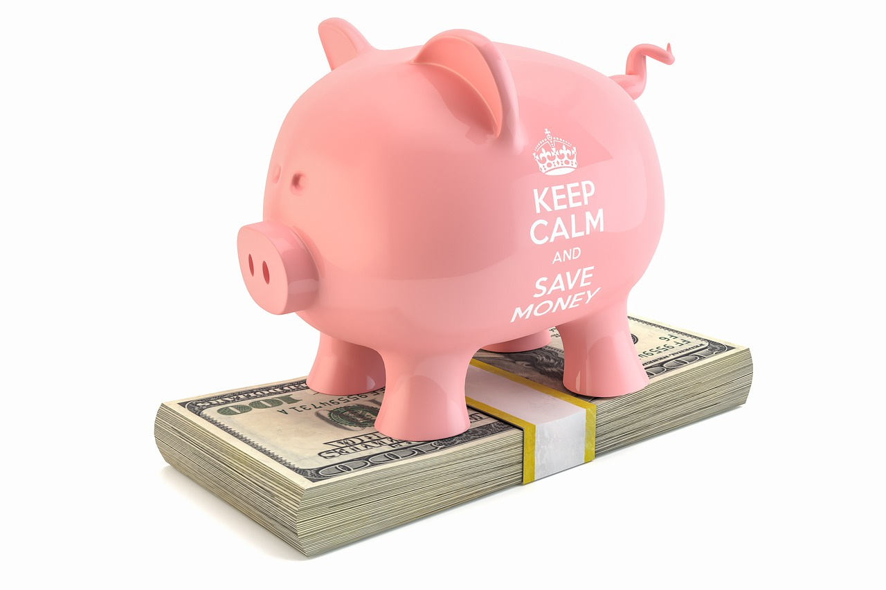 Pink piggy bank standing on dollars.