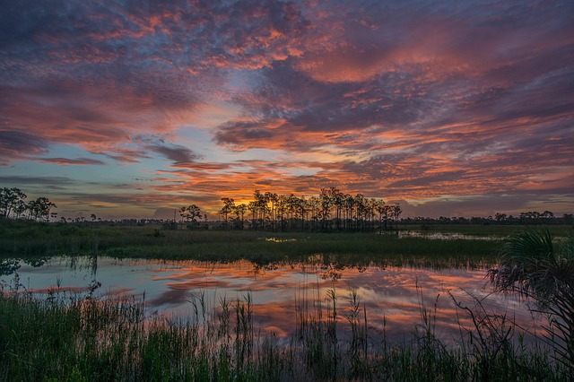 A sunrise in Lakewood Ranch.